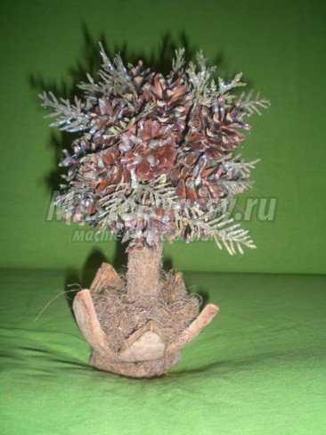 Топиарий из сосновых шишек