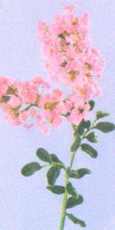 Цветы своими руками из ниток и проволоки