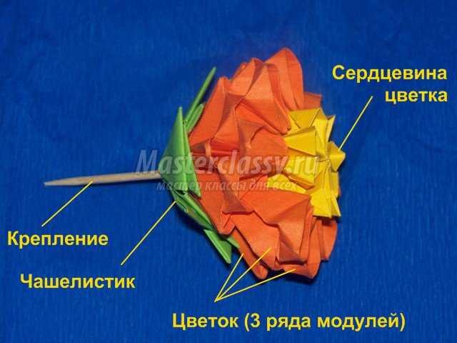 Модульно оригами – цветок кактуса