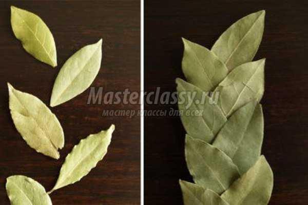 Венок из лавровых листьев своими руками
