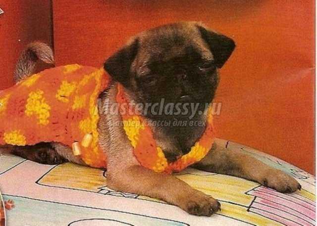 Вязаный сарафан для собаки крючком