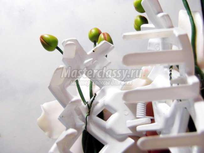 Украшения из полимерной глины орхидея