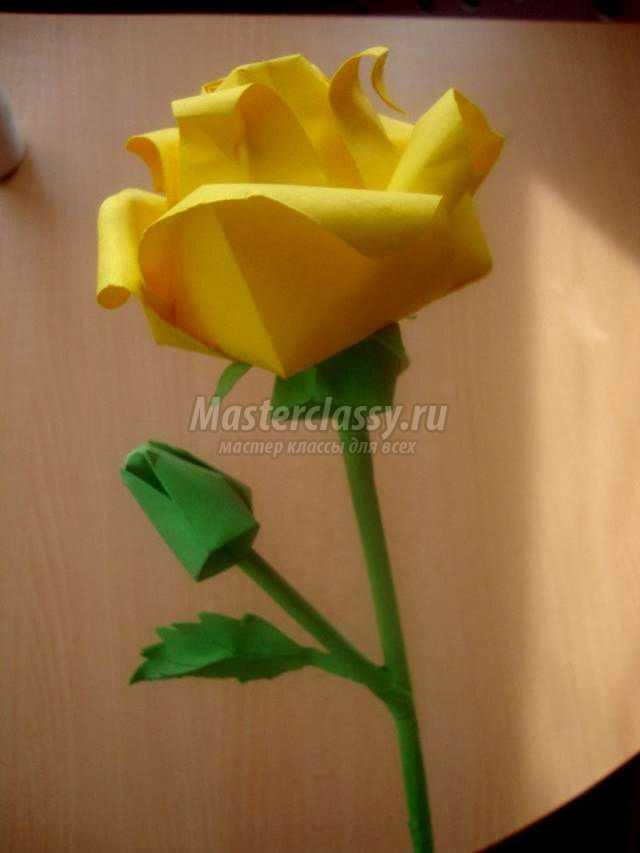 Фото роза из бумаги схемы для