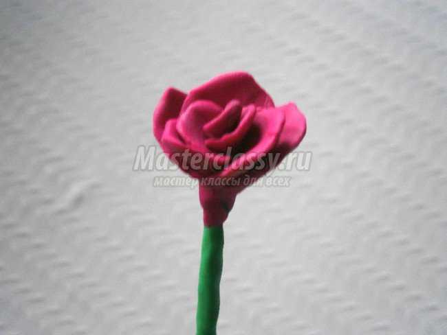 розы из пластилина