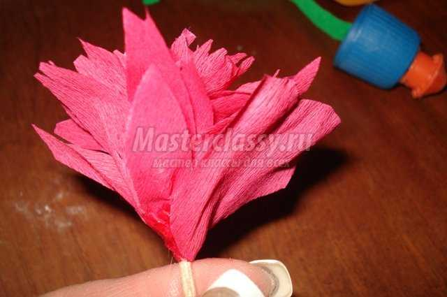 Цветы из гофрированной бумаги. Пион