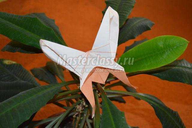 оригами. Оранжевая бабочка