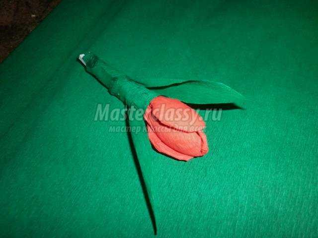 цветы из гофрированной бумаги. Тюльпаны