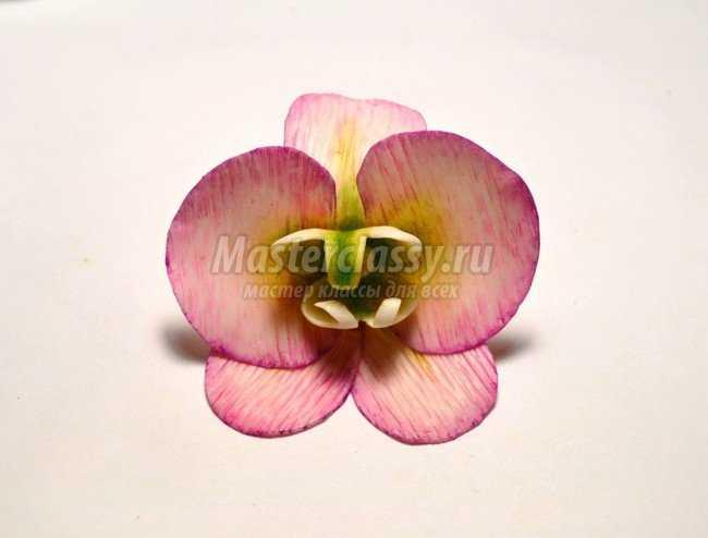 Брошь из холодного фарфора. Орхидея
