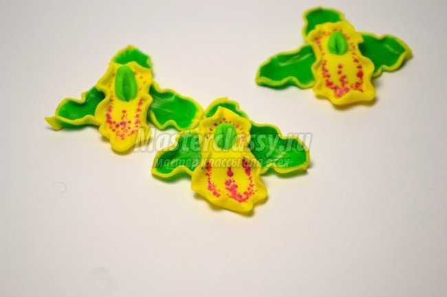 Цветы из полимерной глины. Летние орхидеи