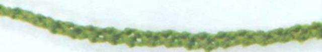объемное игольное кружево. Цветочные колье