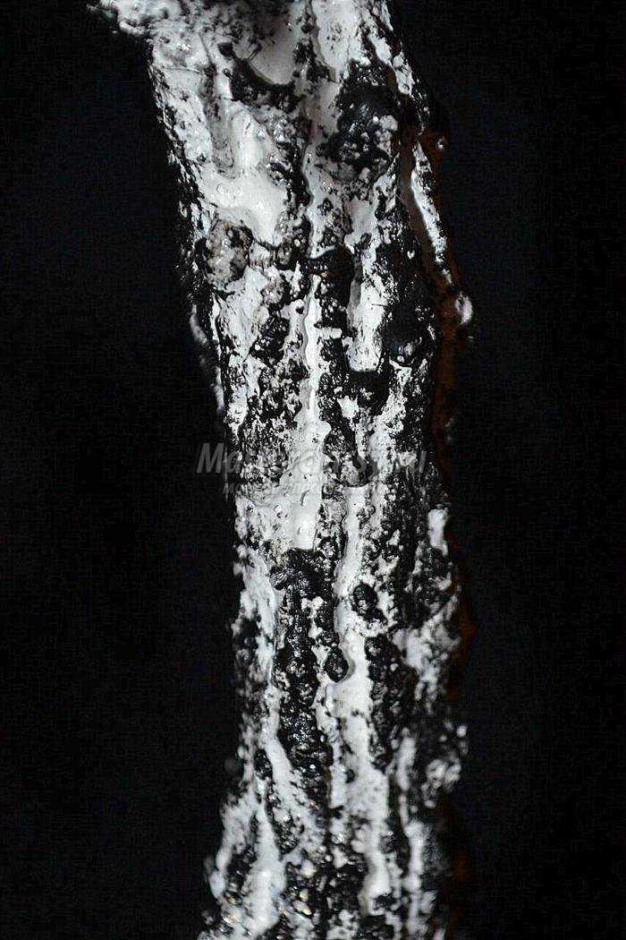 белоснежная береза из бисера
