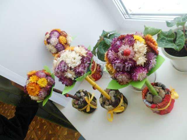 топиарий из сухоцветов для мамы. Маленькое чудо