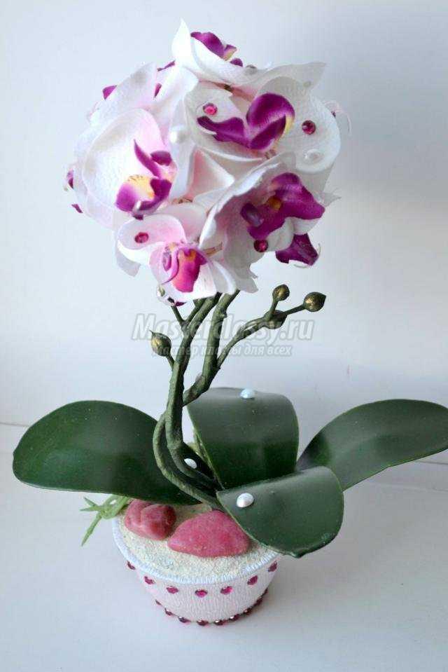 Топиарий из орхидеи своими руками