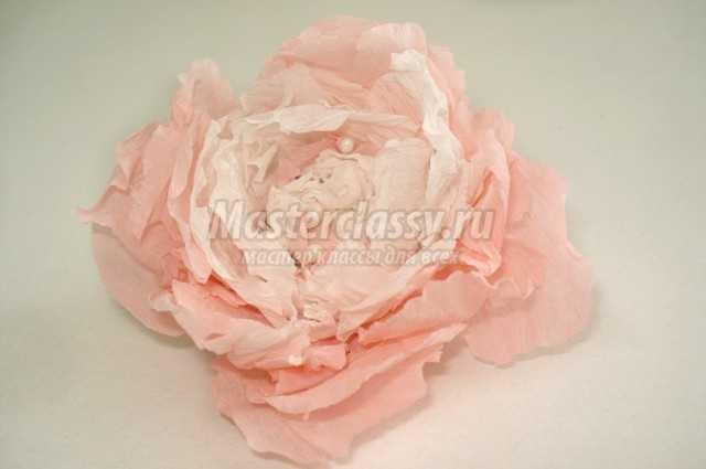 Бумагопластика цветы