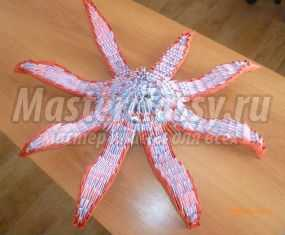 звезда осьминог