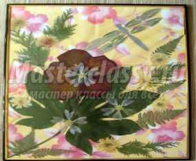 картина из сухоцветов