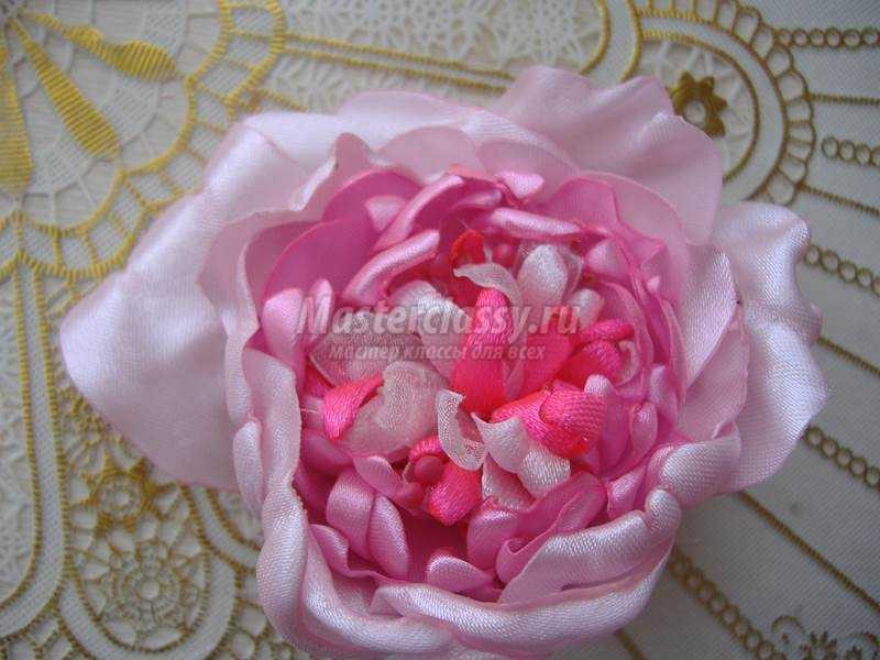 Староанглийская роза из атласных лент фото