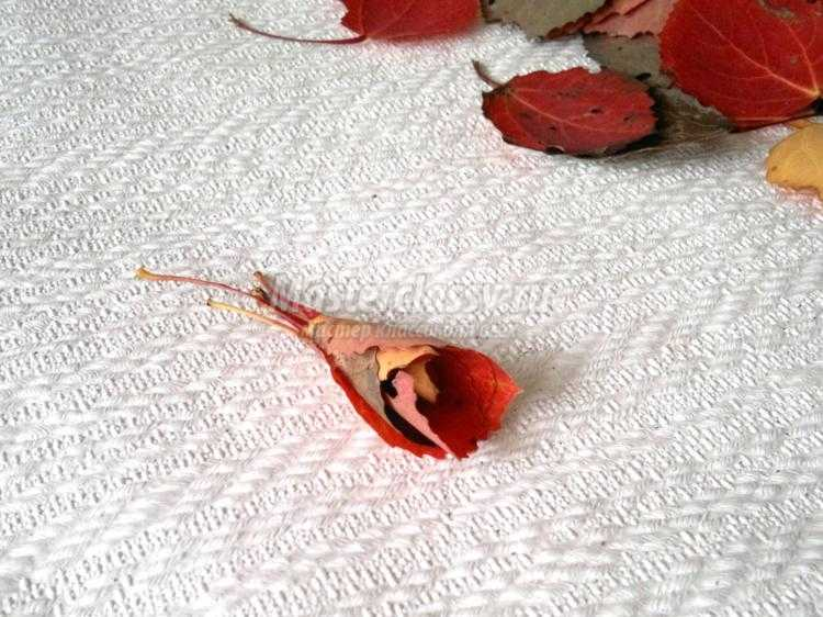 1411824301_4 Букет из осенних листьев и рябины своими руками. Мастер-класс с пошаговыми фото