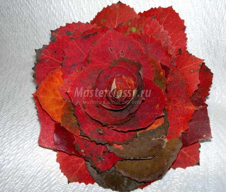 1411824353_7 Букет из осенних листьев и рябины своими руками. Мастер-класс с пошаговыми фото