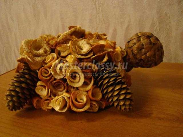 поделки из природных материалов. Черепаха Тортилла