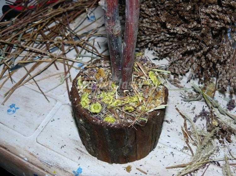 декоративное деревце из сухоцветов
