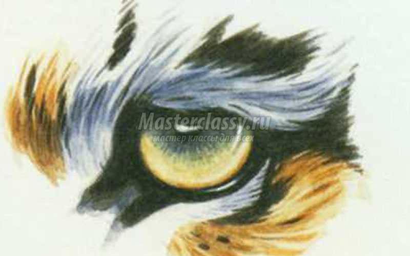 изображение глаз при рисовании