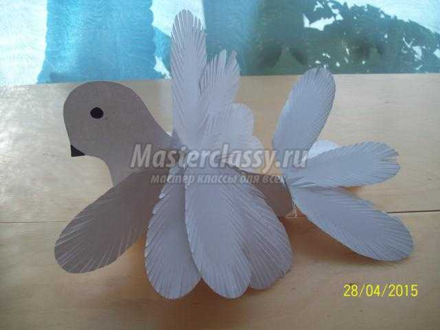белый голубь мира из бумаги к 9 Мая