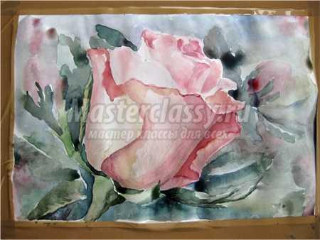 Как нарисовать розу: поэтапно с фото