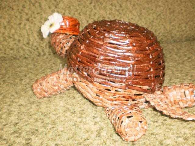 шкатулка из бумажных трубочек. Черепаха Тортилла