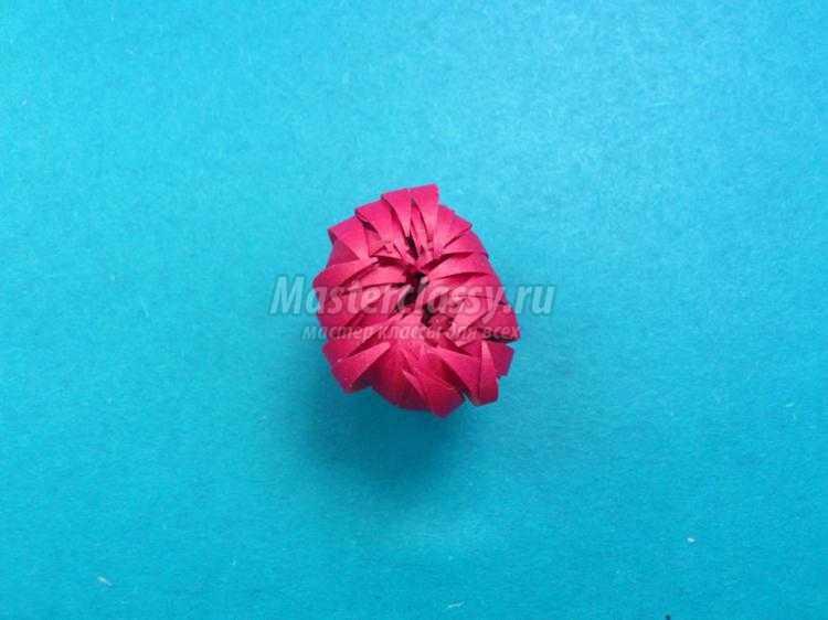 цветы из бумаги. Астра