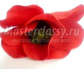 Цветы из фоамирана. Мак. Мастер-класс с пошаговыми фото