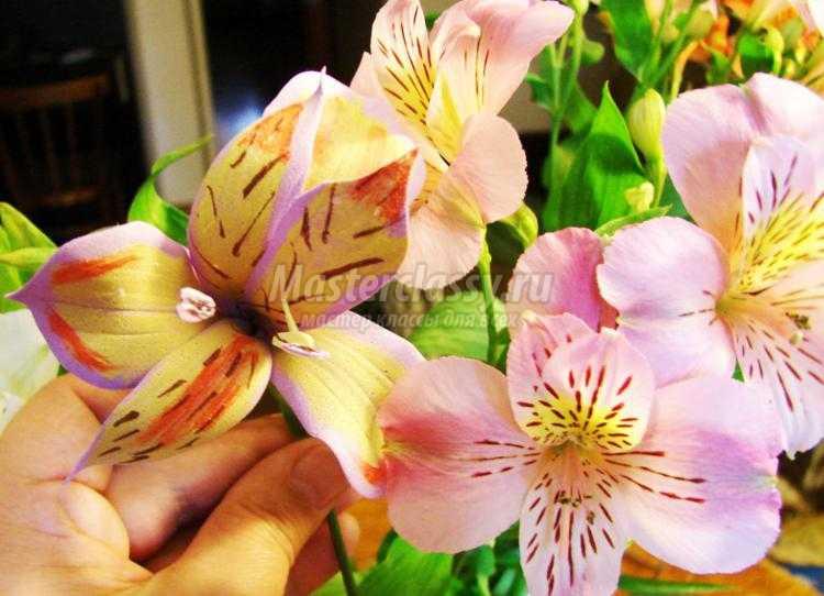 цветок альстромерии из фоамирана