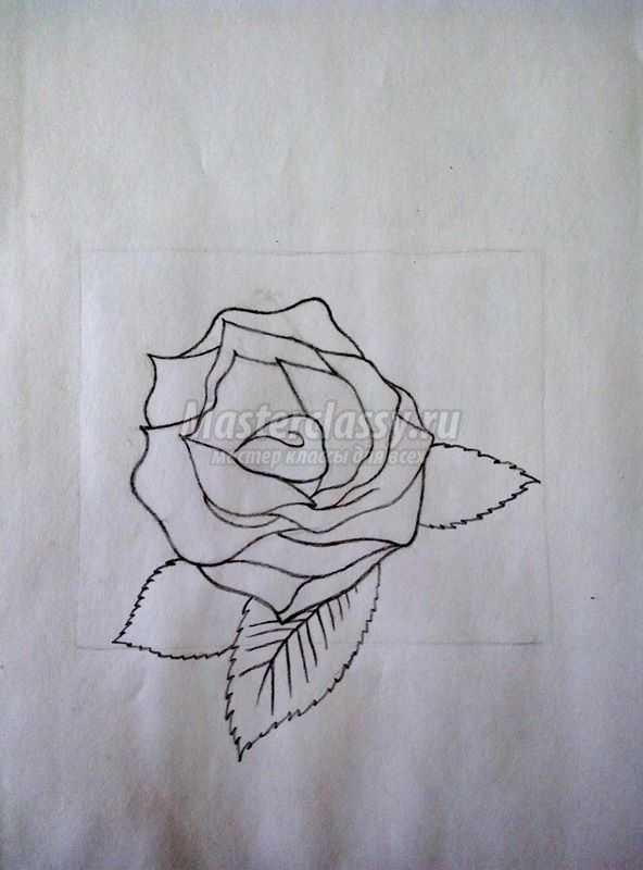 роза карандашом пошагово