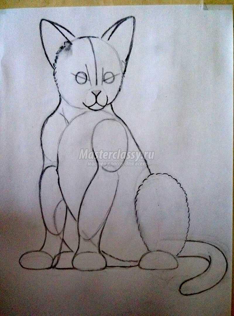 нарисованные кошки карандашом фото
