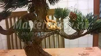 Дерево бонсай. Мастер-класс с пошаговыми фото
