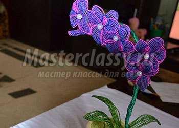 Орхидея из бисера. Пошаговый мастер-класс