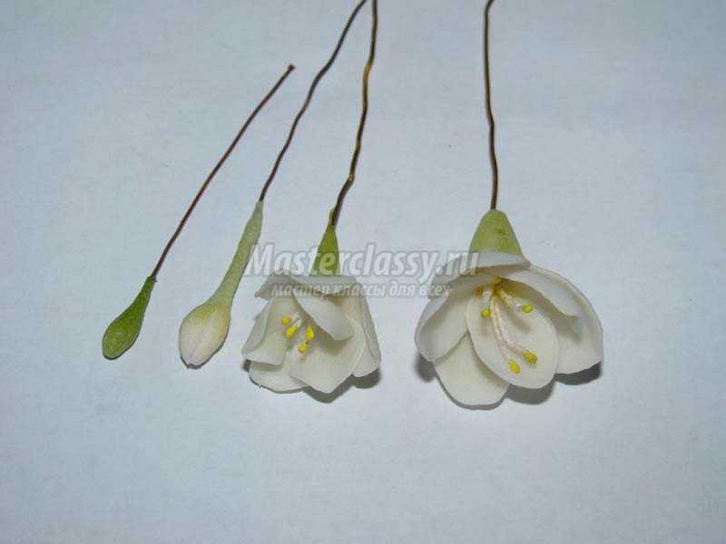 цветы из фарфора мастер класс