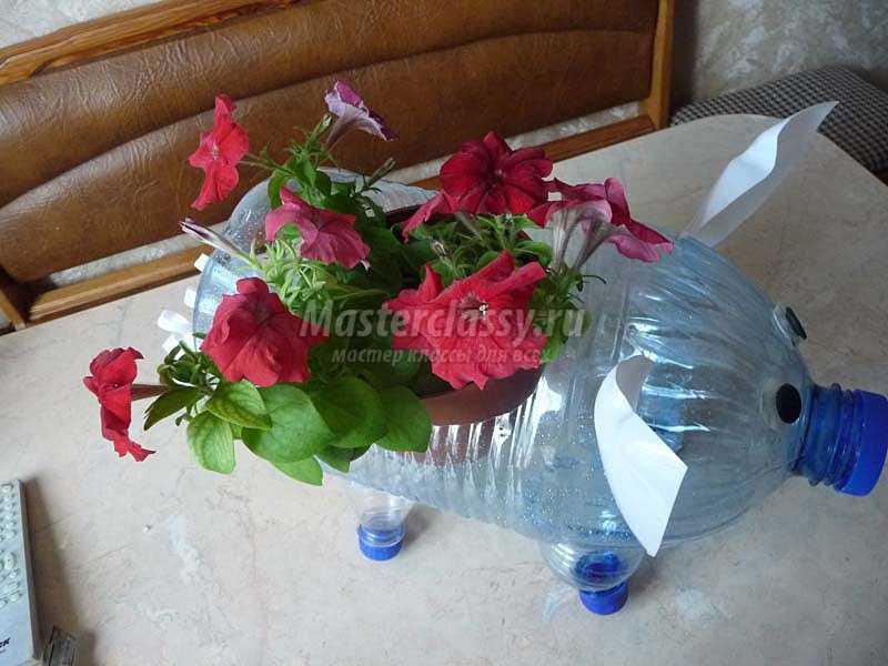 поросенок сделанный своими руками из пластиковой бутылки