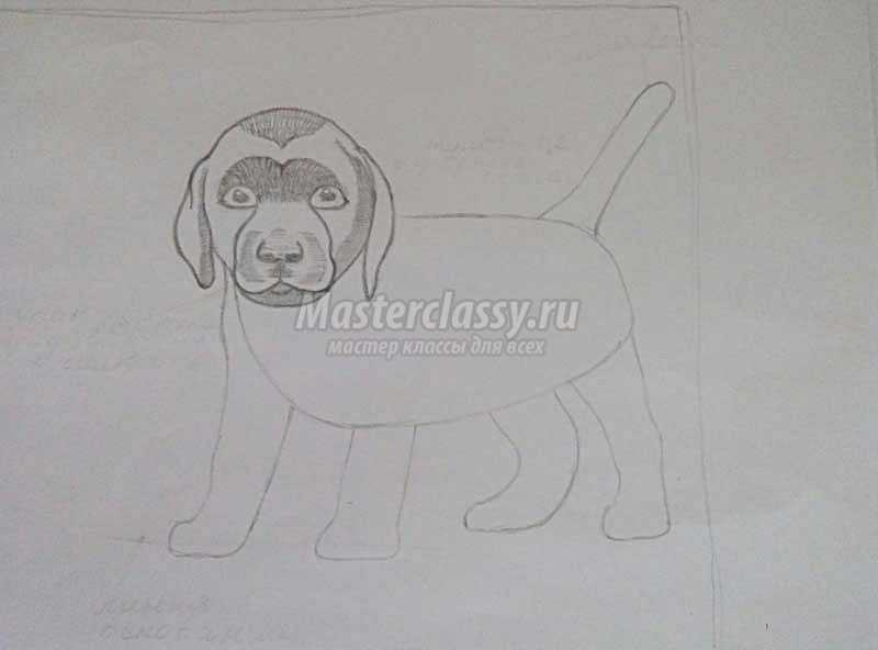 как нарисовать собаку поэтапно для начинающих