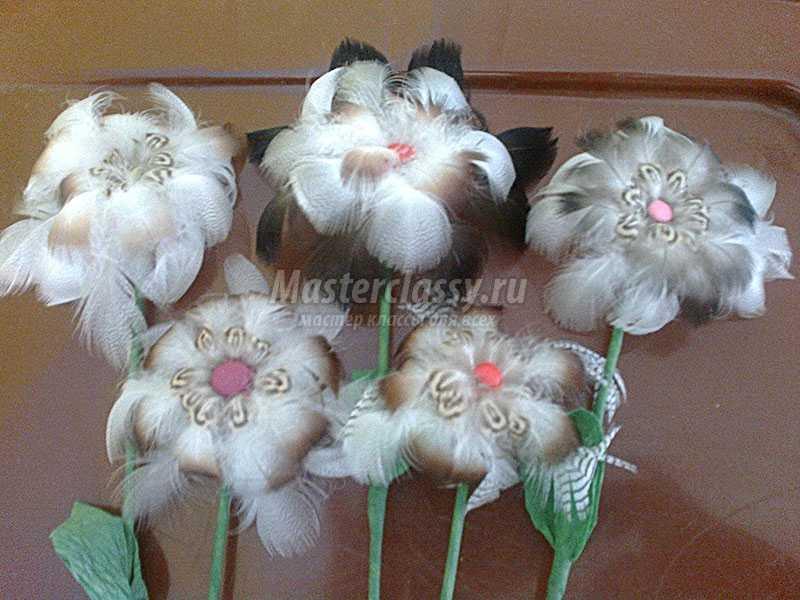 цветы из перьев своими руками фото