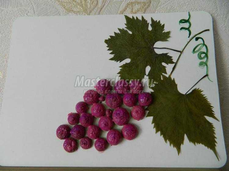 детская аппликация из листьев и желудей. Виноград