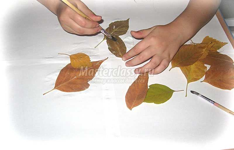 аппликации +из осенних листьев