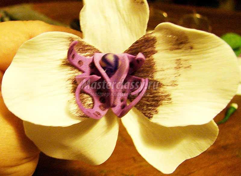 мк орхидея из фоамирана