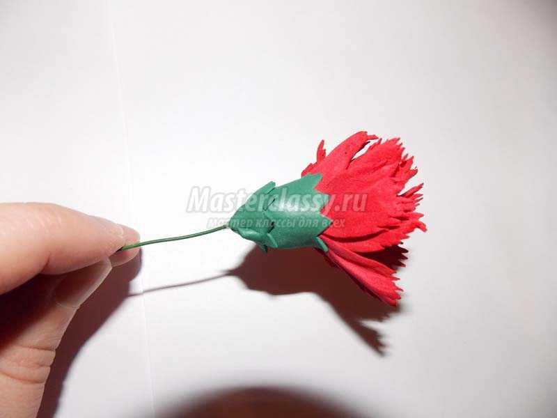 цветы из фоамирана мастер