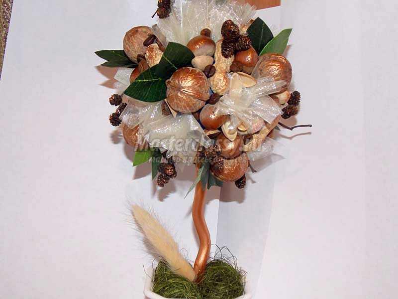 топиарий из орехов фото