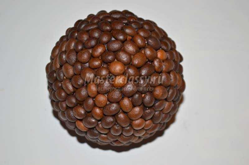 топиарии из кофейных зерен