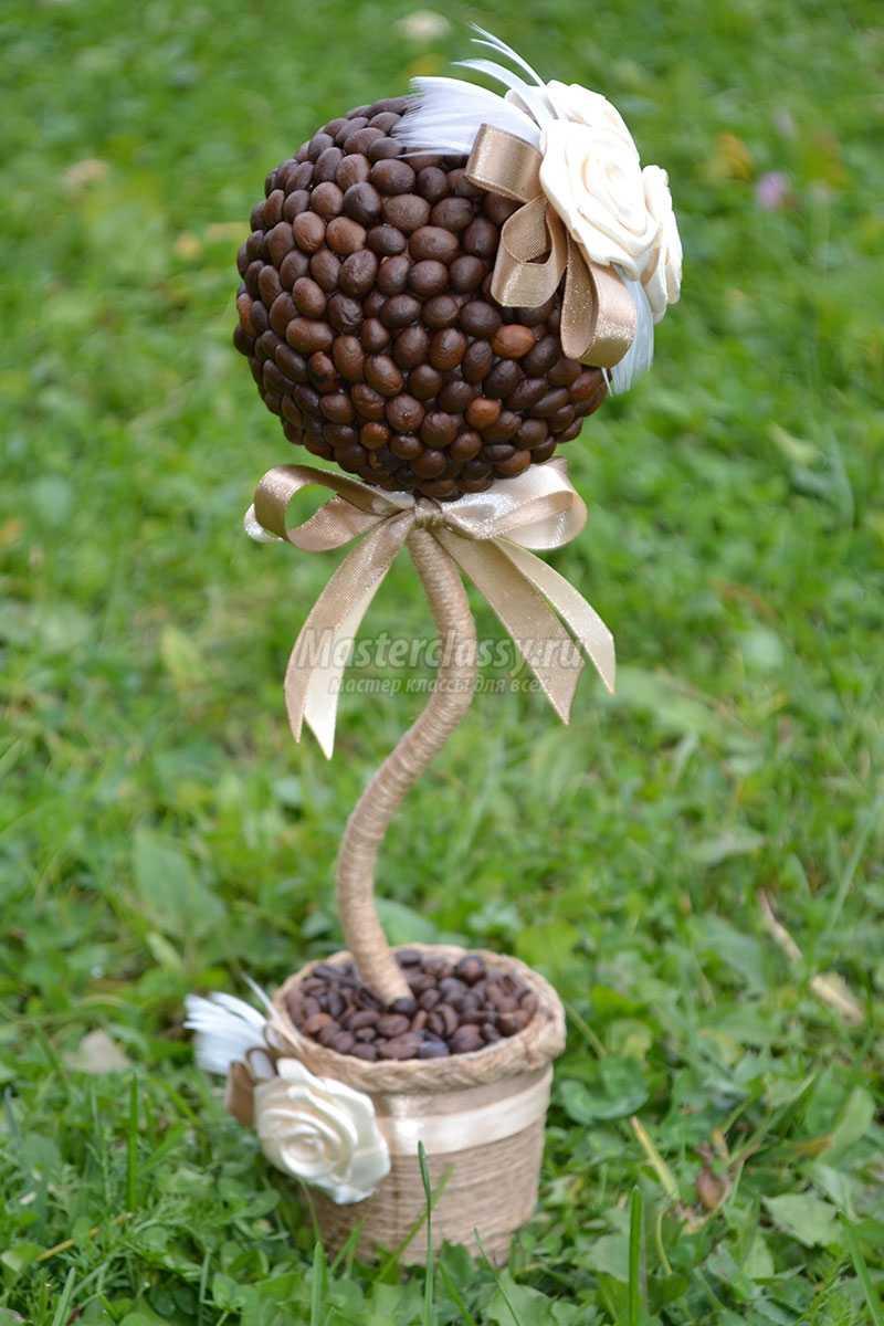топиарий из кофейных зерен фото