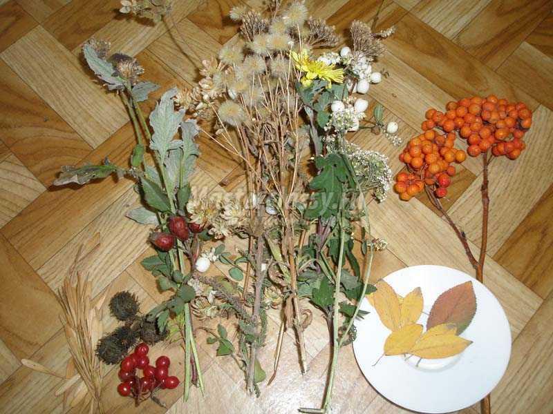Цветов спб цветы из осеннего материала заказ цветов