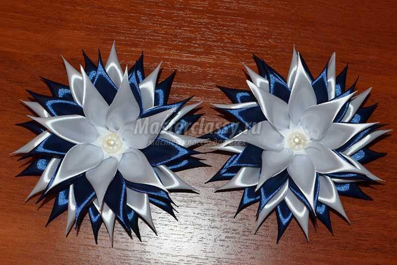 цветы канзаши астра
