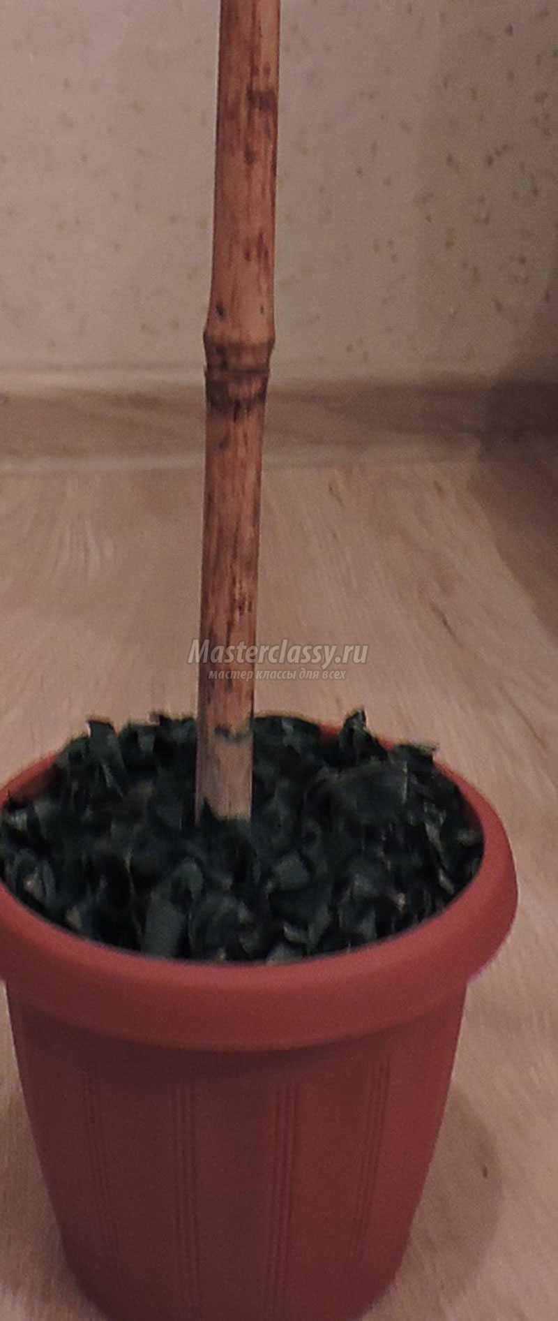 топиарий из природного материала